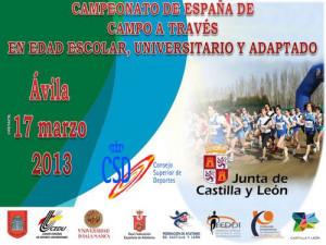 Cartel anunciador de la competición con sede en Ávila