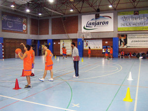 basket24